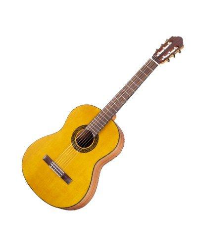 Walden N550 - класическа китара