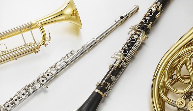Духови инструменти